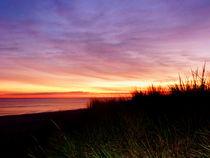 Lonely Beach at Sunrise Norfolk VA by Susan Savad