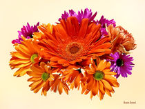 Mixed Bouquet With Gerbera Daisy and Mums von Susan Savad