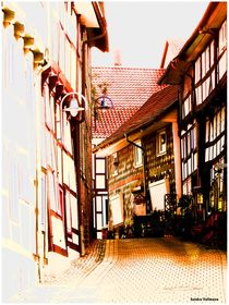 '~Timbered Lane Pretty ~' by Sandra  Vollmann