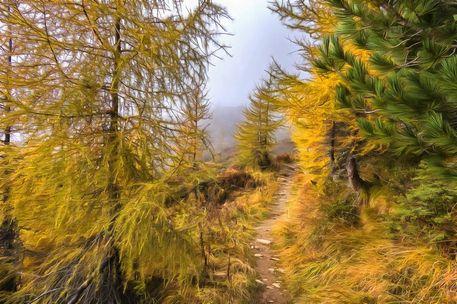 Wanderweg1v3
