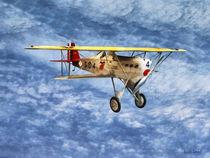 1920s Biplane by Susan Savad