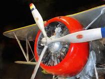F3F-2 Biplane by Susan Savad