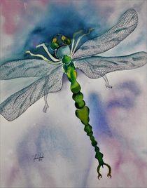 Libelle, Insekt, Aquarell von Theodor Fischer