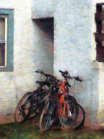 Bicycles in Yard von Susan Savad