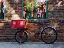 Manhattan NY - Delivery Bicycle Greenwich Village by Susan Savad