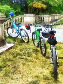 Line of Bicycles in Park von Susan Savad