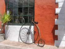 Penny-Farthing in Front of Bike Shop von Susan Savad