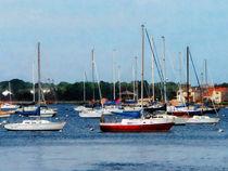 Group of Sailboats Newport RI by Susan Savad