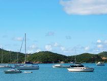 Caribbean - Peaceful Sea St. Thomas von Susan Savad