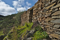 Ruins of a schist cottage in Alentejo von Angelo DeVal