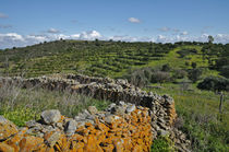 Antique stone wall of an old farm by Angelo DeVal