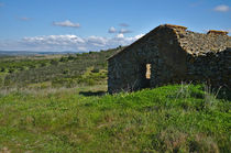 Abandoned Cottage in Alentejo by Angelo DeVal