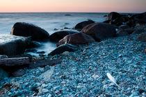 Bird feather among the rocks by Tony Töreklint