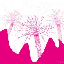 California Palm von jopelim