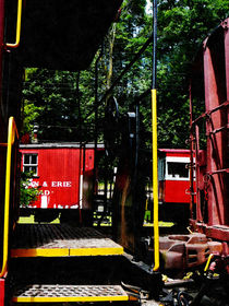 Morristown and Erie Caboose by Susan Savad