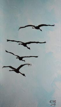 Ein Stück vom Himmel  - airborne - by Eike Holtzhauer