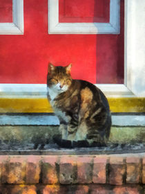 Tabby Cat by Red Door von Susan Savad