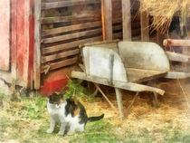 Farm Cat von Susan Savad