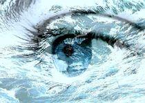 Auge13