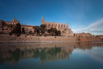 Palma Cathedral by Leighton Collins