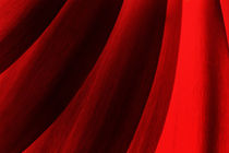 Red Abstract of Chrysanthemum Petals by John Williams
