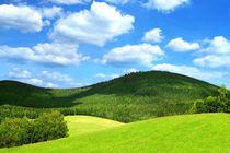 Hügellandschaft von darlya