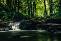 Bächlein im Wald von Florian Kunde