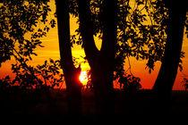 Sonnenuntergang by darlya