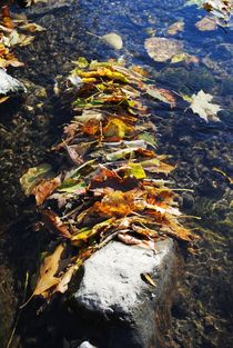 Stacked Autumn Leaves 2, 2015 by Caitlin McGee