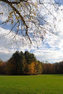 Autumn Landscape, 2015 by Caitlin McGee