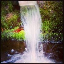 water pure by Ronja Treffert