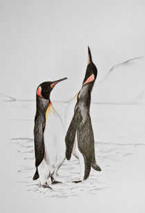 Pinguins by abrenner