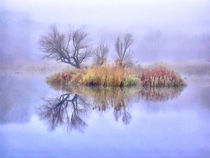 Mysterious Lake 1 von GabeZ Art