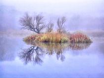 Mysterious Lake 1 by GabeZ Art