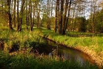 Landschaftsidylle von darlya