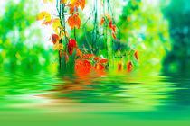Herbststimmung 2 von fraenks