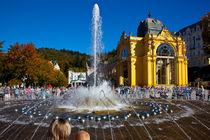 Marienbad Kolonade mit Springbrunnen by Gerhard Köhler