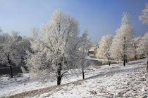 Winter in Seiffen by Gerhard Köhler