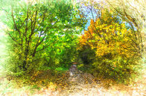 Autumn Forest Path Art by David Pyatt