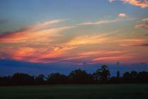 Beautiful Endings by Vicki Field