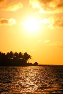 Romantischer Sonnenuntergang in Key West von ann-foto