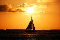 Katamaran fährt gen Sonne von ann-foto