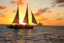 Der Katamaran segel in den Sonnenuntergang von ann-foto