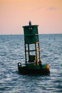 Der Pilot des Wassers by ann-foto
