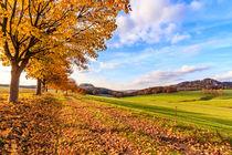 Herbstidylle in der Sächsischen Schweiz by Dirk Hoffmann