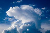 Himmelstier Himmelsfigur von mroppx