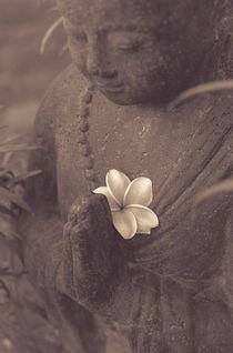 Mönch aus Stein mit Blume von mroppx