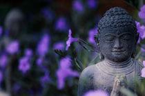 Buddha unter lila Blumen by mroppx