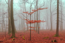 Magic forest in red and turquoise by wsfflake