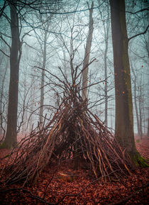 Witch house in the forest with fog by wsfflake